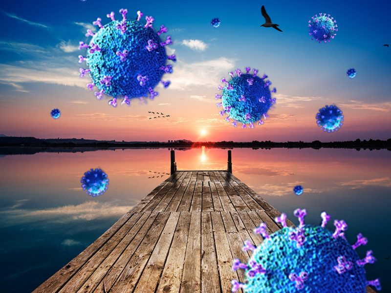 Coronavirus in the air on a dock with a sunset