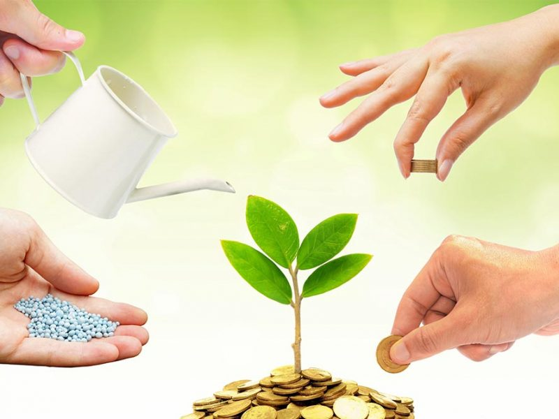 Four hands taking care of a money tree. One is watering, one is feeding, one is taking, and one is giving.