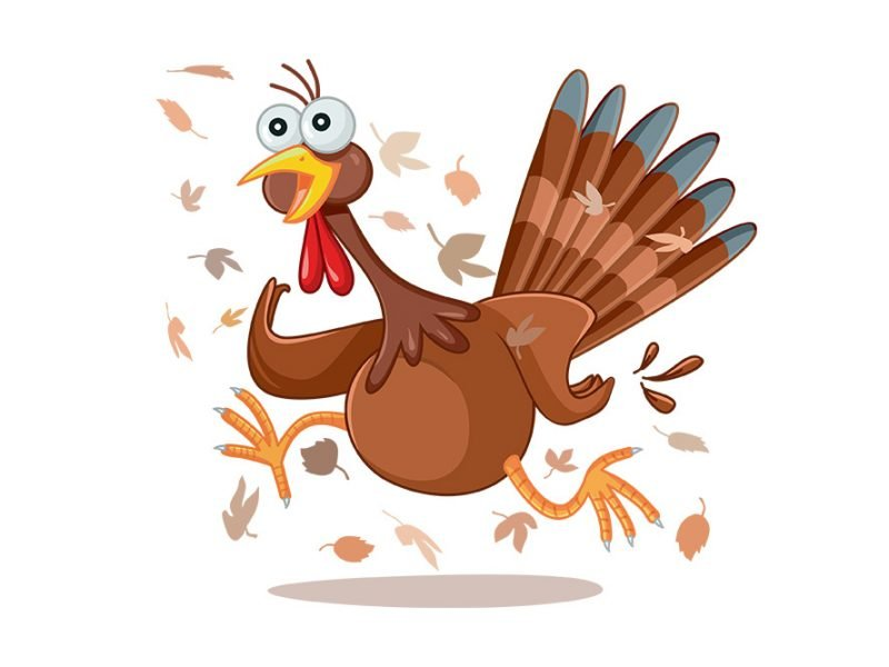 Vector image of a live turkey with its eyes bulging and running with autumn leaves around it