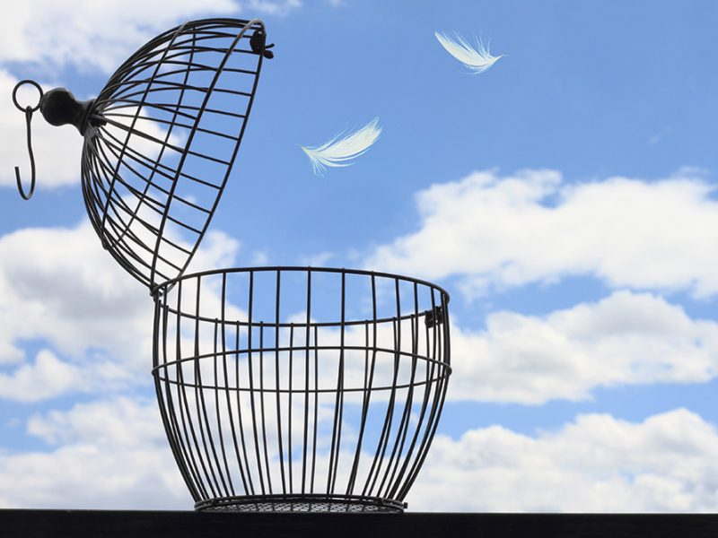 An open metal birdcage with no bird in it on a beautiful cloudy day with two feathers floating out of the cage