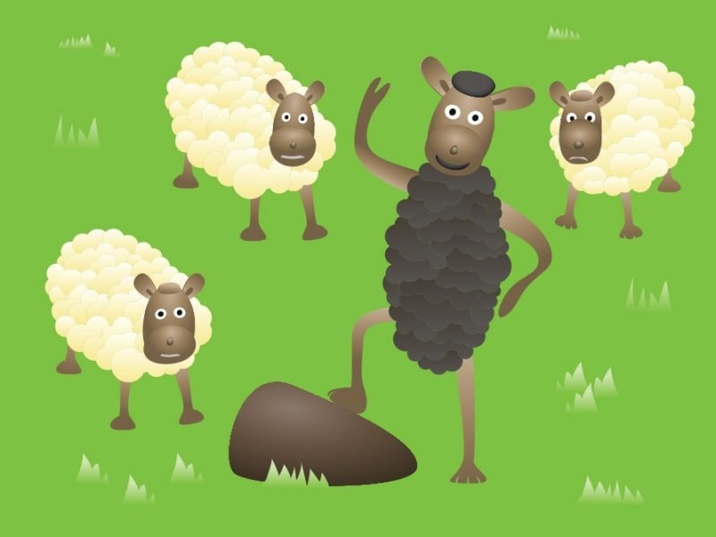Vector image of sheep grazing with a black sheep standing on two legs and waving while the other sheep look alarmed and confused