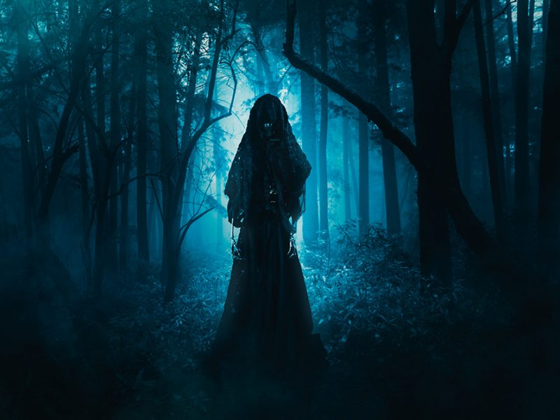 A skeletal figure shrouded in black with only the skeletal hands visible standing in a dark and foggy forest at night